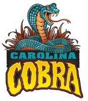 Carolina Cobra Coming to Carowinds in 2009