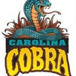 Carolina Cobra to Strike Carowinds in 2009