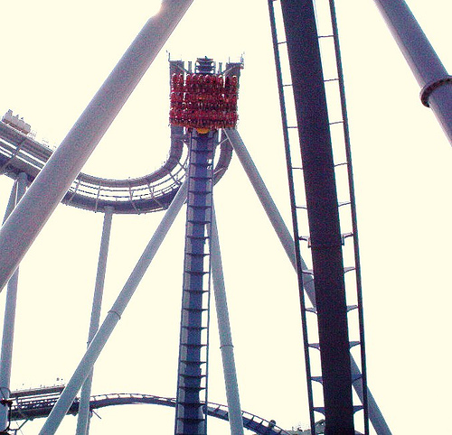 Griffon at Busch Gardens Europe