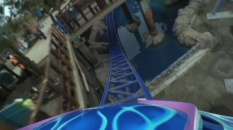 Manta - SeaWorld San Diego POV Video