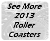 2013 Roller Coasters