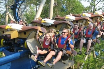 Wild Eagle - Dollywood - Train - Wing Roller Coaster