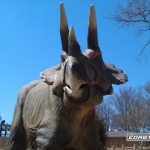 Dinosaurs Alive - Triceratops - Carowinds