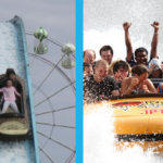 Log Flumes vs Shoot the Chutes